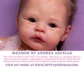 """ALMOST GONE 4 GOOD! CuStOm ReBoRn Meadow By Andrea Arcello (17""""+Full Limbs) LE1500"""