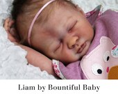 """CuStOm ReBoRn Liam by Bountiful Baby  (19""""+3/4 Arms & Full Legs)"""