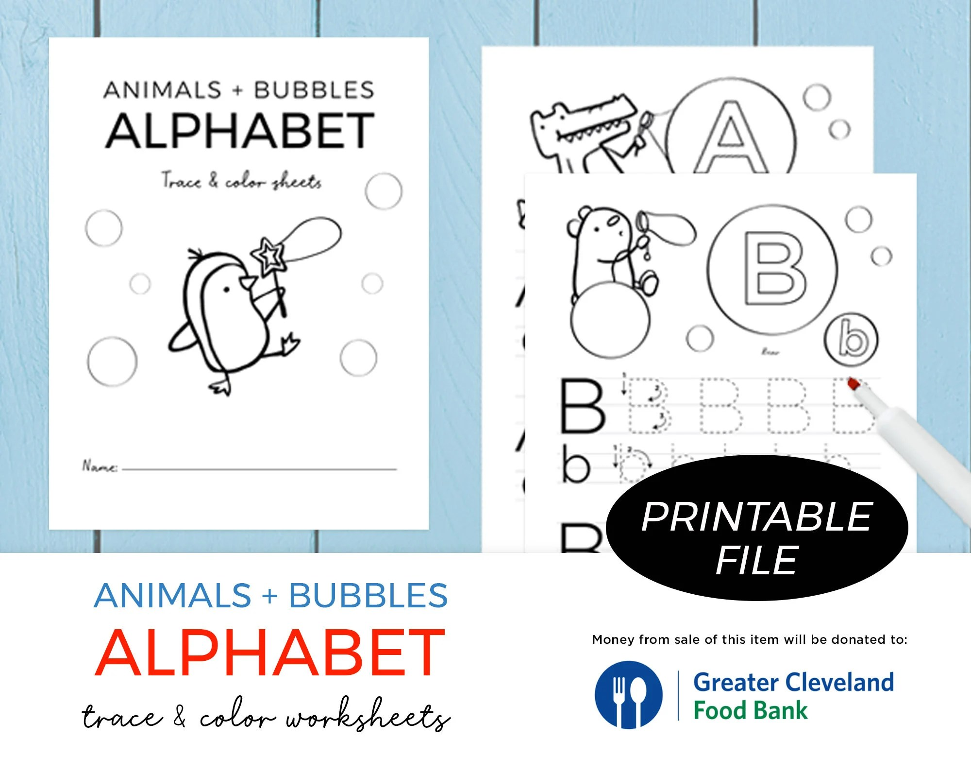 Traceable Alphabet Worksheets Alphabet Tracing Letters