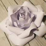 Paper Flowers Paper Roses Paper Flowers Wall Decor