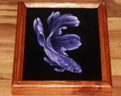 "8x10"" Original Oil Painting - Purple White Beta Fish - Underwater Seacreature Oceanlife Wall Art"