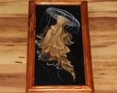 "6x12"" Original Oil Painting - Golden Gold Yellow White Black Jellyfish Tentacles - Underwater Seacreature Oceanlife Wall Art"