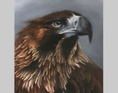 "12x16"" Original Oil Painting - Brown Eagle Wedge-Tailed Eagle Bird of Prey - Bird Ornithology Animal Wall Art"
