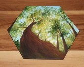 "5-6"" Original Mini Oil Painting Hexagon Flat Panel - Green Trees Summer Looking Up Forest Landscape - Small Canvas Wall Art"
