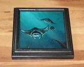 "6x6"" Original Mini Oil Painting - Turquoise Manta Rays Mantarays Stingrays Oceanlife Seacreature - Small Canvas Wall Art"