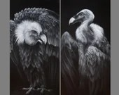 "10x20"" Original Oil Painting (s) - Vulture Brothers Cloak and Dagger Black White Dark Spooky Horror Art - Bird Ornithology Animal Wall Art"