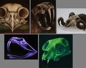 "3x4"", 4x4"" Magnet Skull Skeleton Animal Skull Art Print Refrigerator Thin Flat Square Magnet Stocking Stuffers"