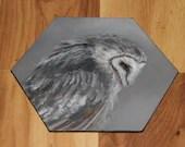 "5-6"" Original Mini Oil Painting Hexagon Flat Panel - Gray White Barn Owl Bird Animals Animal  - Small Canvas Wall Art"