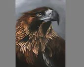 "Art PRINT - Wedge-Tailed Eagle Bird Hawk Brown Hunting Birds Wall Art - Choose Size 4x6"" 5x7"" 8x10"" PRINTS"