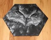 "5-6"" Original Mini Oil Painting Hexagon Flat Panel - Black White Owl Bird Animals Animal  - Small Canvas Wall Art"