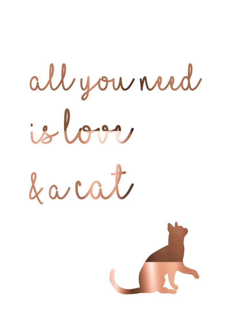 Download Foil Cat Print / All you need is love & a cat / Copper cat ...