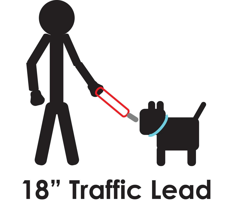 Dog Traffic Leash 15 Rainbow Lightning Free Shipping