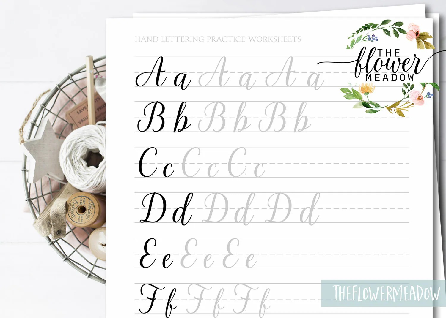 Lettering Practice Learn Calligraphy Hand Lettering Guide