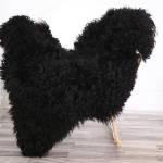 Genuine Rare Gotland Sheepskin Rug Curly Fur Rug Natural Sheepskin Black Sheepskin Novher20