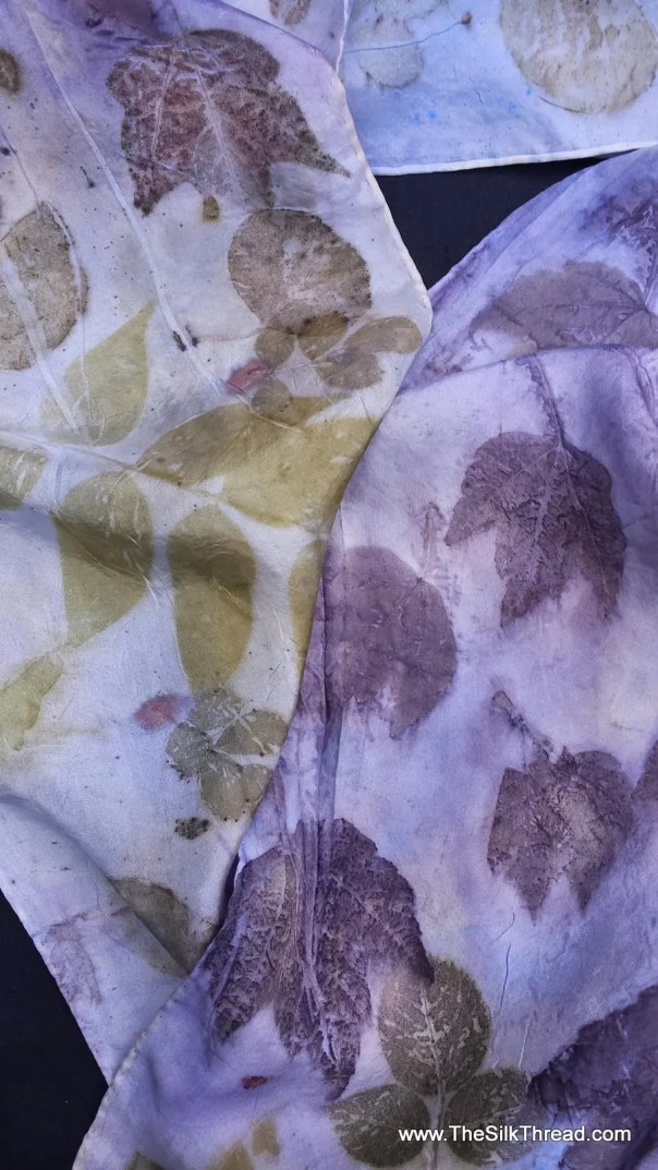 """Silk Scarf, lovely soft purple with green color, eco-printed with assorted leaves by artist, natural, sustainable, 8"""" x 72"""" FREE ship USA"""