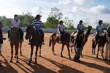 Learn Horse Riding