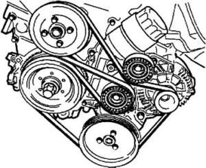 SOLVED: Need serpentine belt diagram for 1994 bmw 325i  Fixya