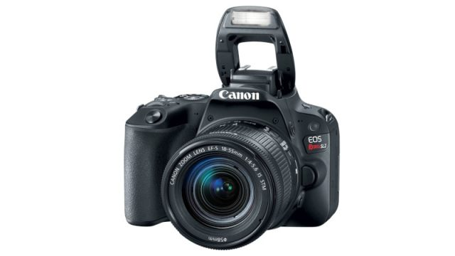 canon 6d markII thumb canon