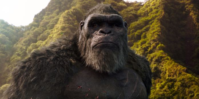 Godzilla vs. Kong India Release Date Brought Forward to March 24 |  Entertainment News