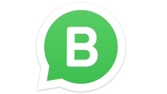 Image result for whatsapp business app