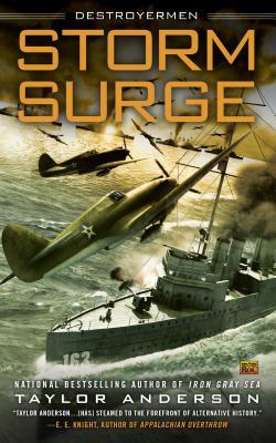 Storm Surge Book Cover