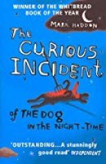 Image result for a curious incident book image