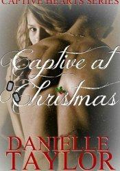 Captive at Christmas (Captive Hearts, #1) Pdf Book
