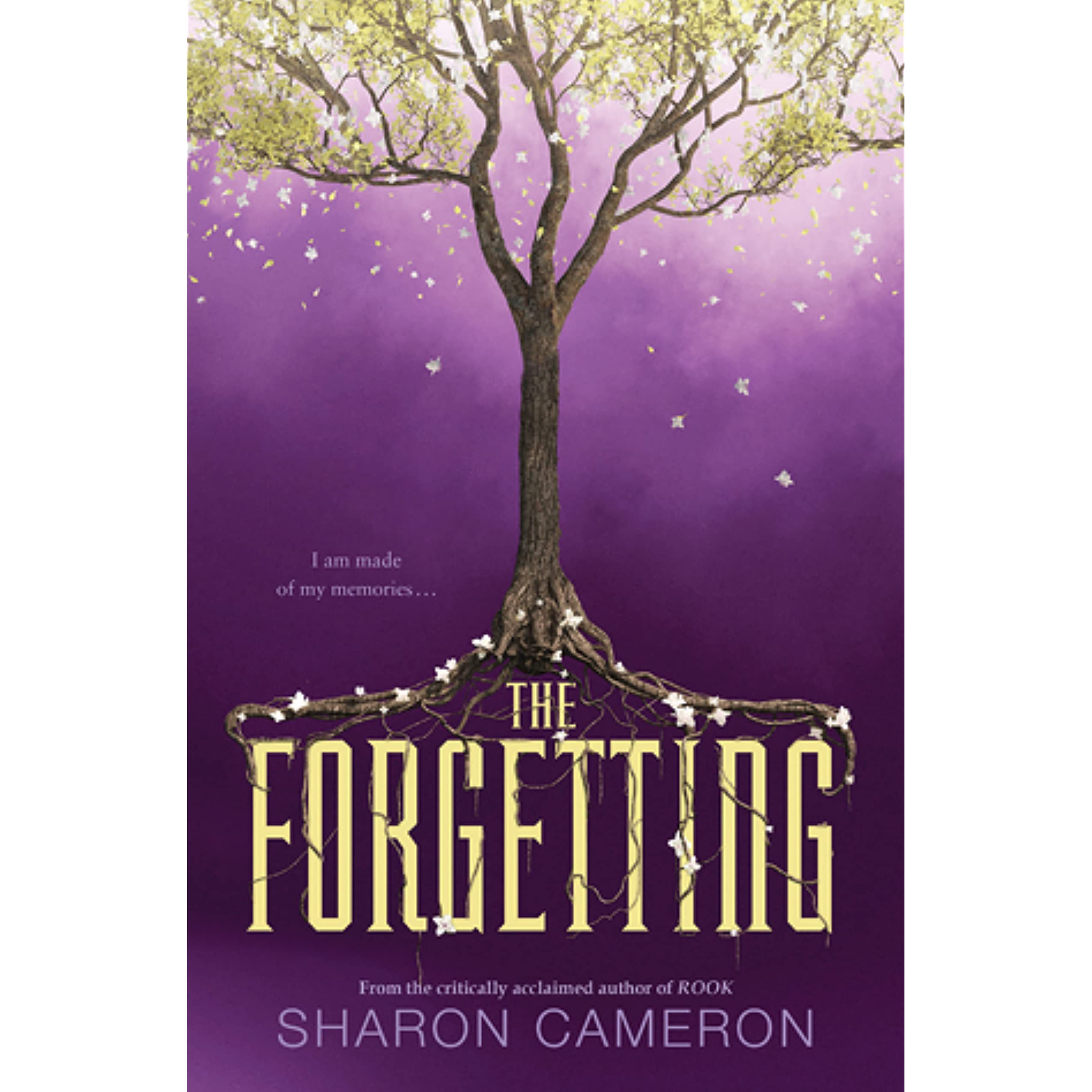 Image result for the forgetting sharon cameron