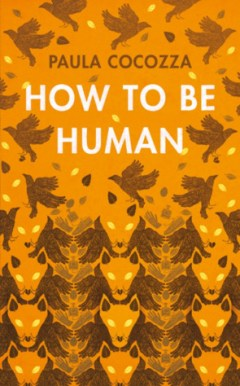 Image result for how to be human paula cocozza