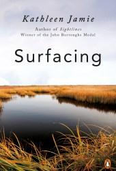 Surfacing Pdf Book