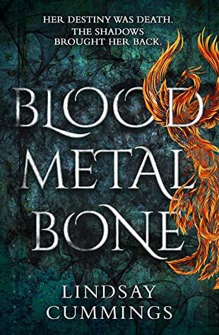 Blood, Metal, Bone Cover