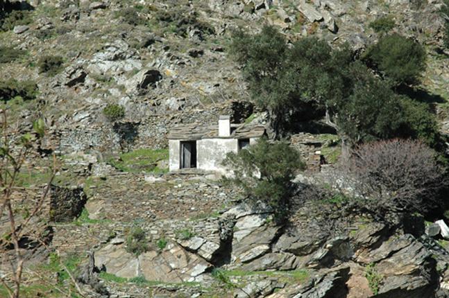 Maison Ikaria 24