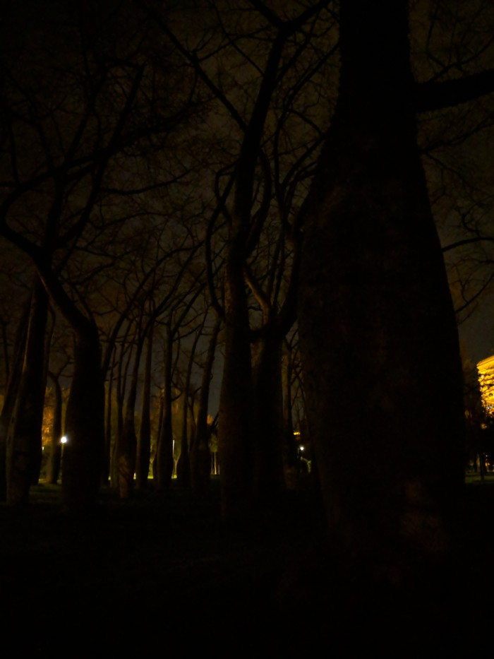15_Pixel_HDR_Night-copia.md.jpg