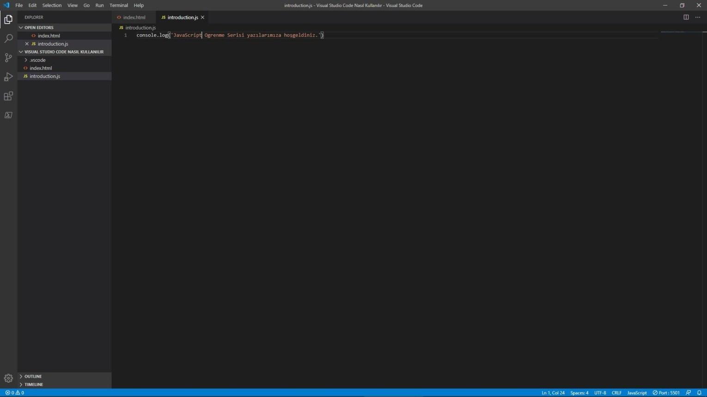 Visual Studio Code introduction.js - JavaScript