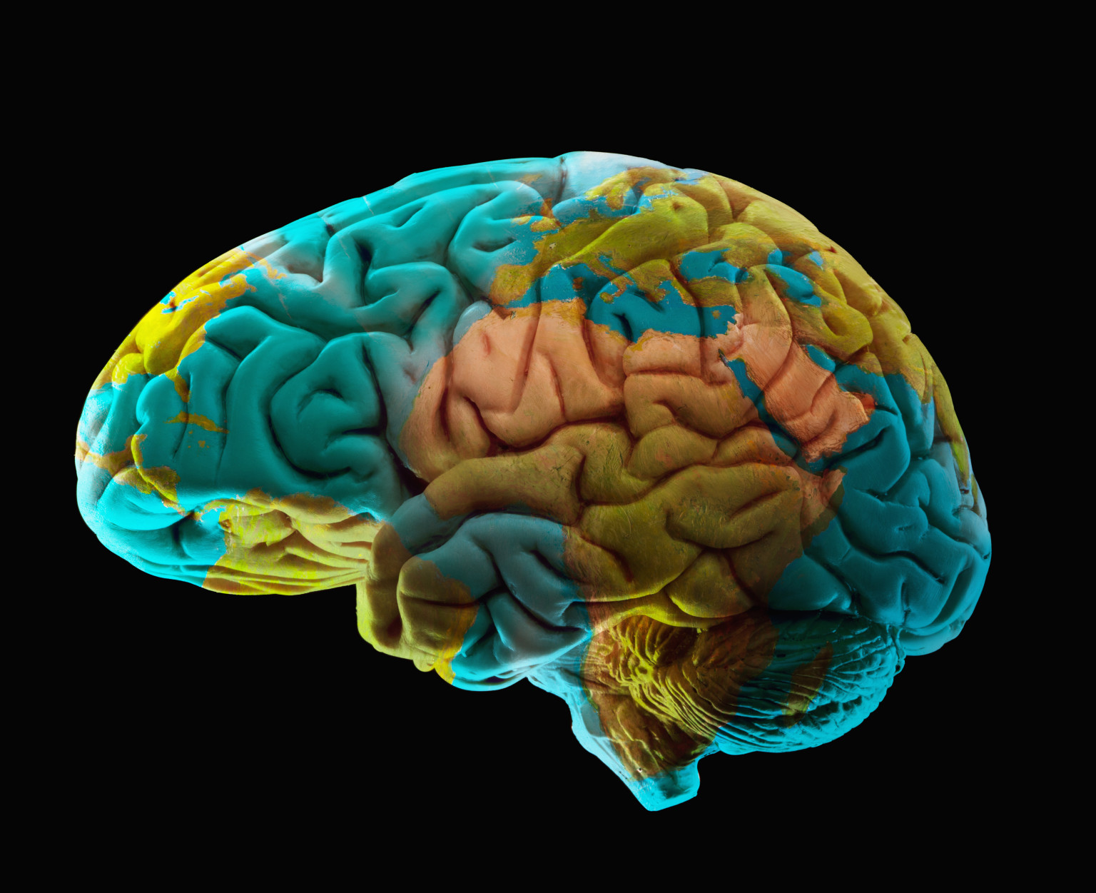 Mapping Emotions In The Brain