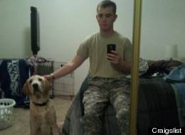 soldier's dog given away