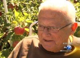 Gene Yale apples