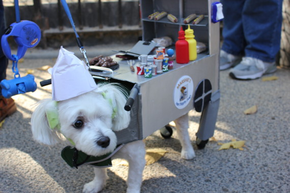 food truck pup