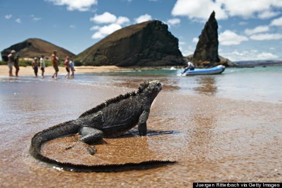 galapagos travel