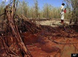 Gulf Oil Spill Media Access