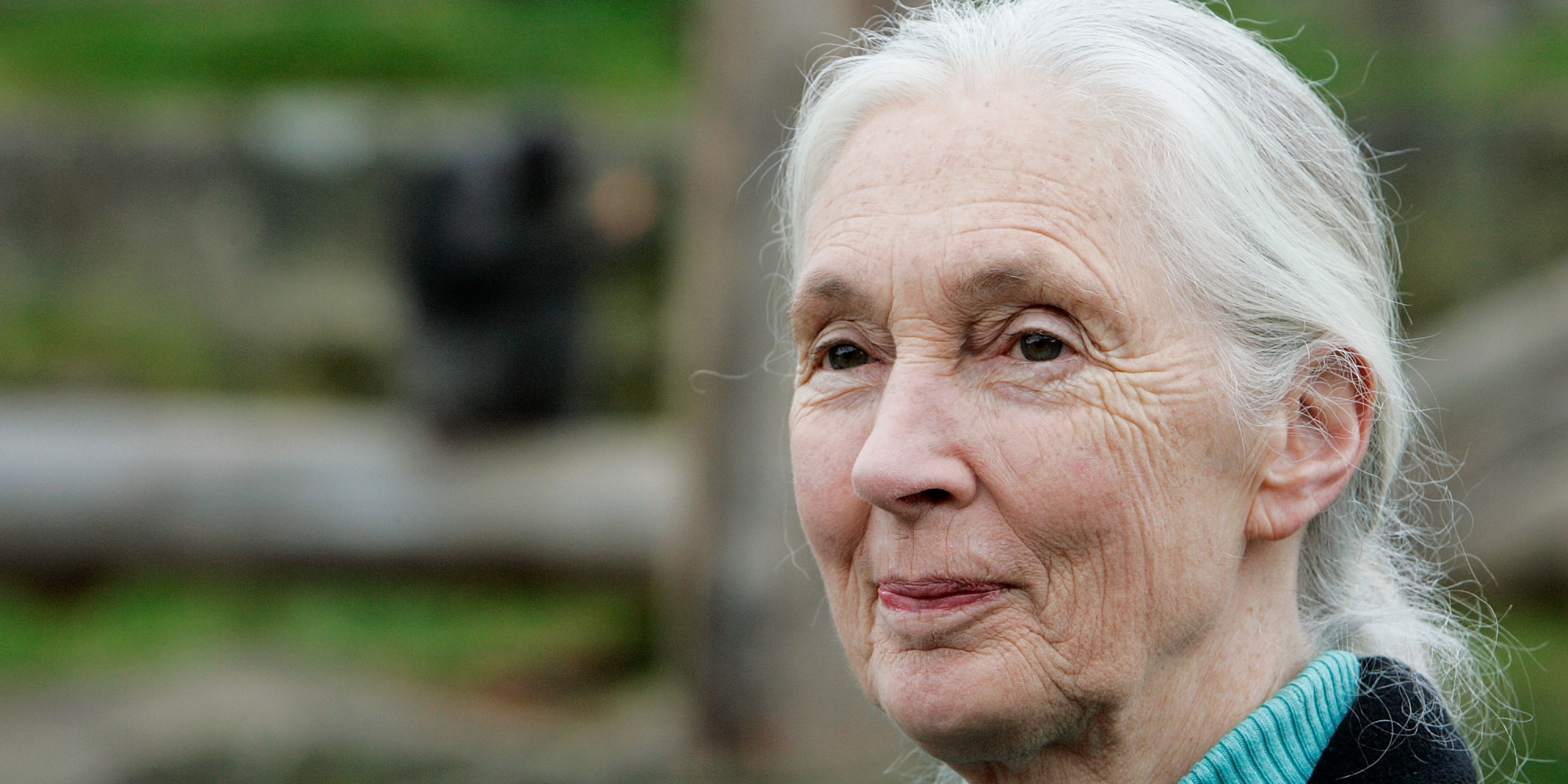 Jane Goodall Questions The Safety Of Gmos