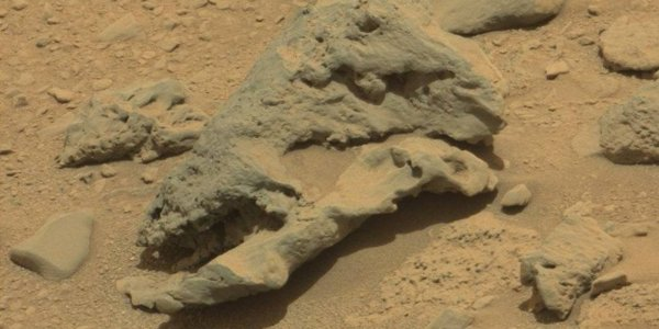 NASA To Ignore 'Alien Skull' Found On Mars, Sensibly