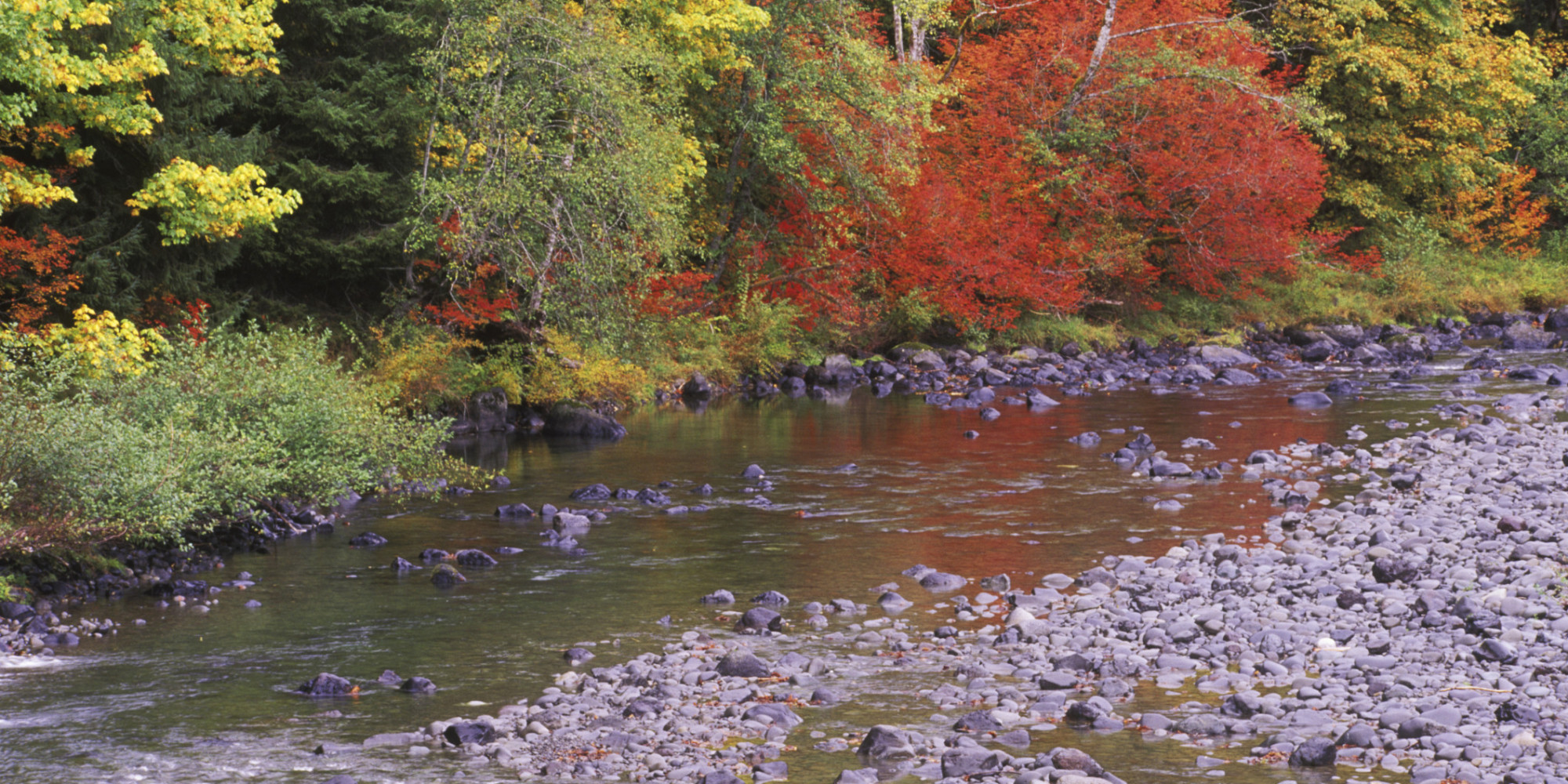 Man Faces Environmental Charges For Trying To Move River