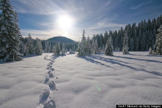 footsteps in snow