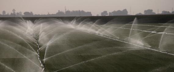 CALIFORNIA FARM WATER