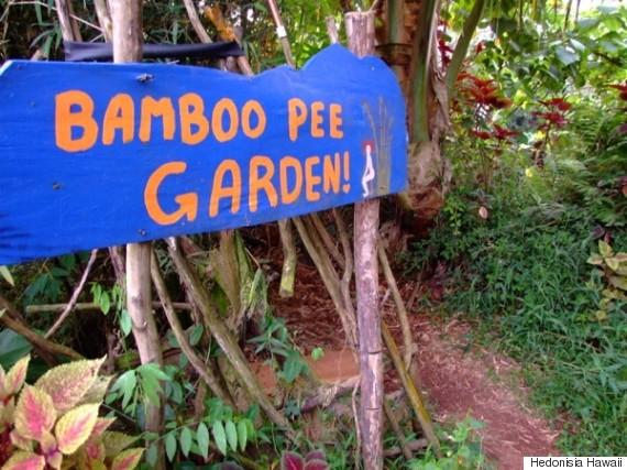 pee garden