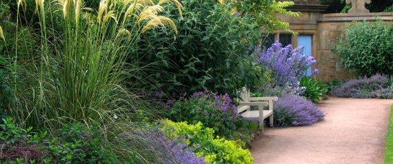 Truc maison comment d sherber son jardin sans produits for Plantes pour jardin anglais