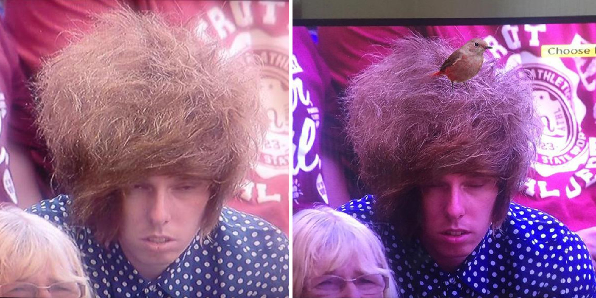 Wimbledon Watcher With Epic Hair Do Becomes Centre Of