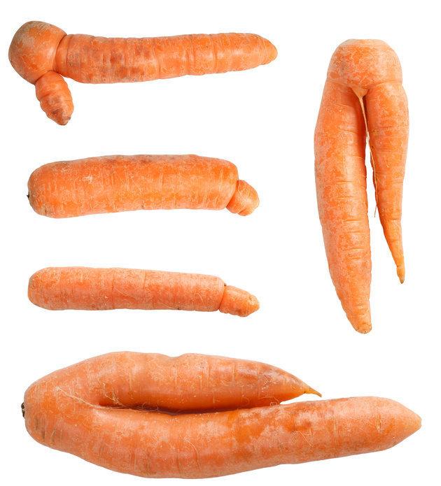 bebes carottes