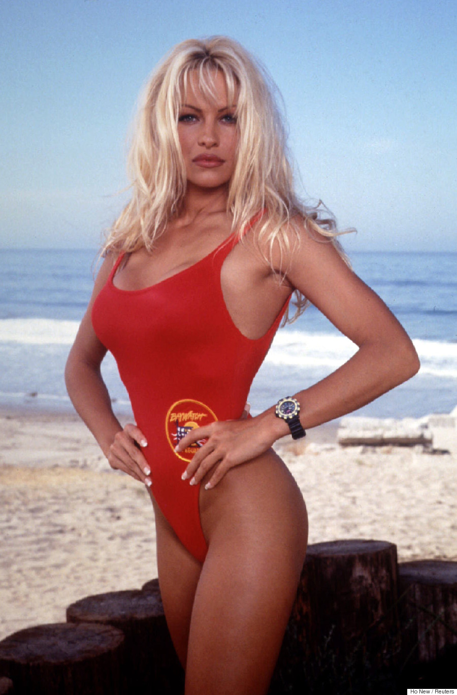 Pam Anderson Home Improvement
